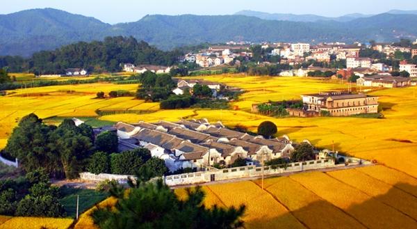 【重磅】江阴农村住房建设管理试点方案出台,
