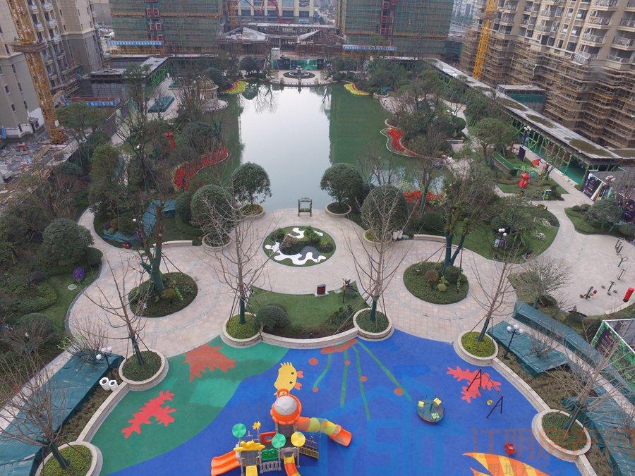 小区园景 拍摄于2017.4