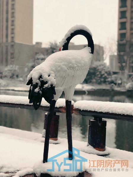 恒大帝景雪景图摄于2018.1月