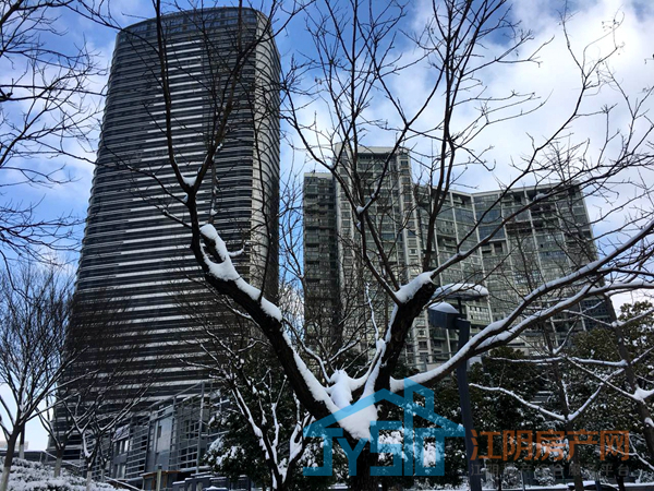 丹芙春城雪景图摄于2018.1月